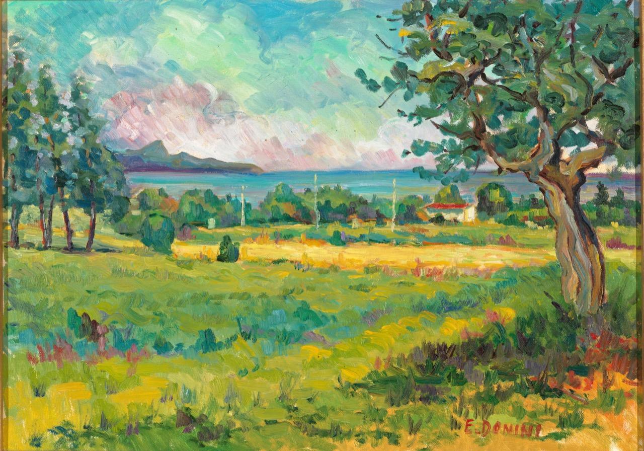 Lago di Garda da Lonato, anni '80, olio su tela, 50x70 cm