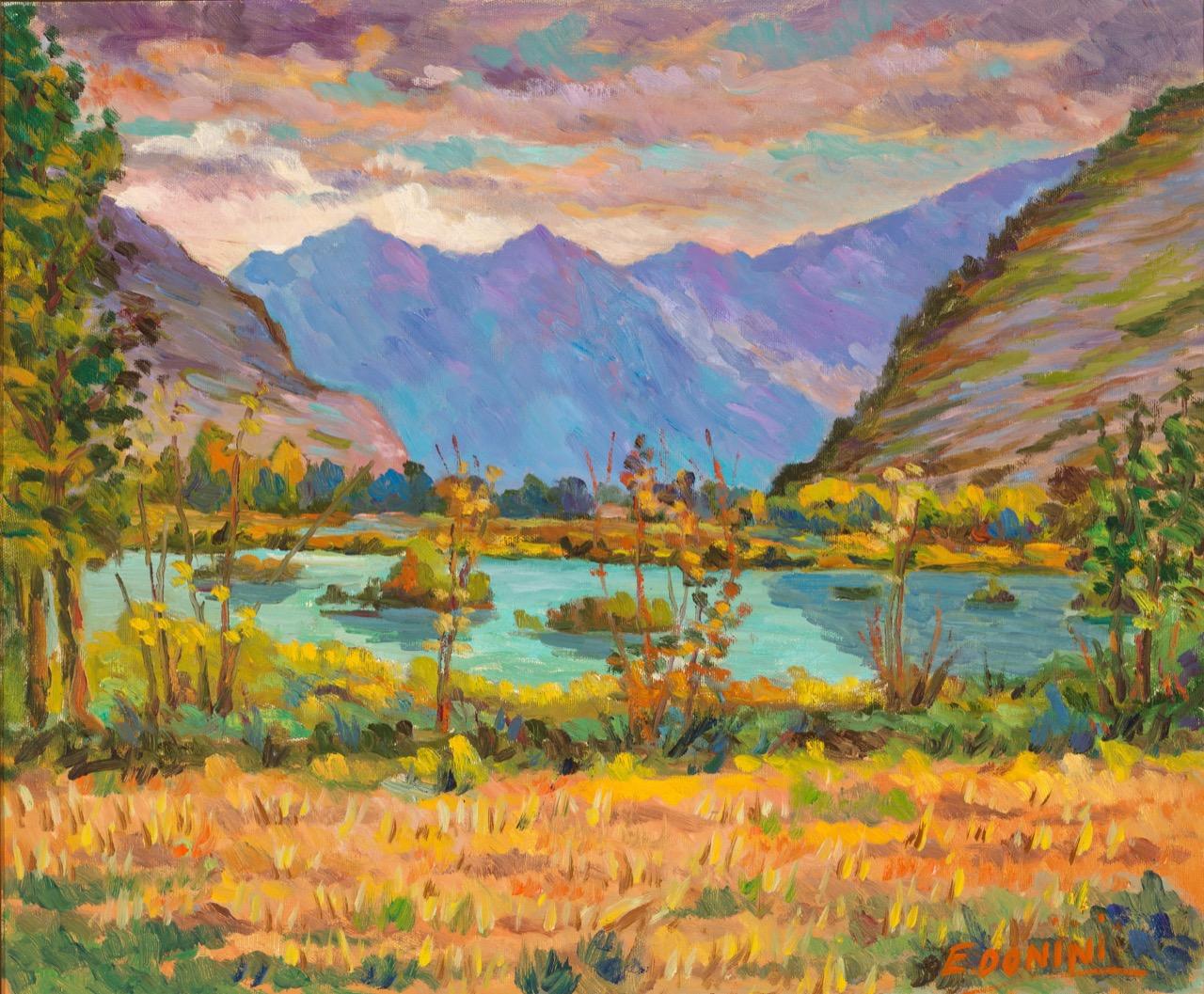 Le Torbiere, anni '80, olio su tela, 50x60 cm