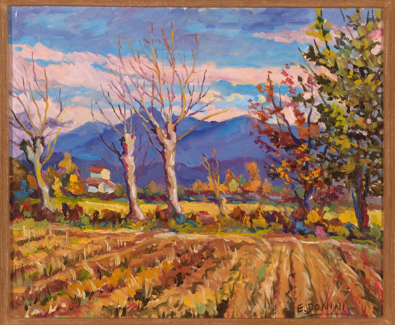 Campagna di Poncarale, anni 80, olio su tela, 50x60 cm